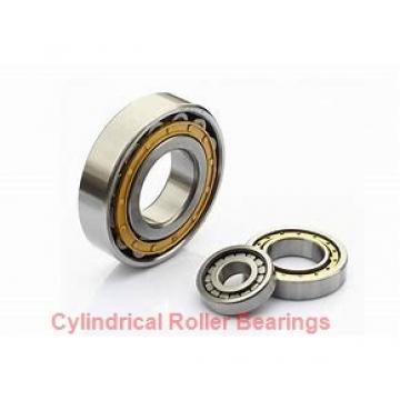3.15 Inch | 80 Millimeter x 6.693 Inch | 170 Millimeter x 2.283 Inch | 58 Millimeter  SKF NJ 2316 ECML/C4  Cylindrical Roller Bearings